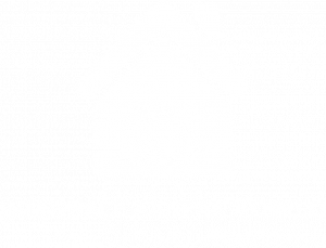 Integrale Aanpak Maatschappelijke Opvang Almelo